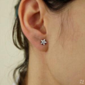 Brinco semijoia Zircônia em formato de Estrela